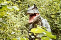 蛇发女怪龙恐龙在一个绿色森林里 免版税图库摄影