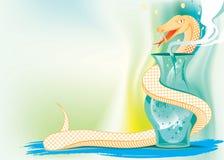 蛇和自然医学 向量例证