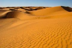 蛇形状的沙丘 免版税图库摄影
