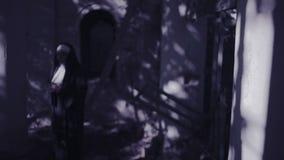 蛇神尼姑 尼姑服装的恶魔般妇女走在寺庙附近的 万圣节 股票视频