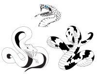 蛇纹身花刺 免版税库存图片