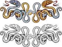 蛇纹身花刺 免版税图库摄影