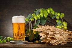 蛇麻草、啤酒和大麦 免版税库存照片