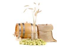 蛇麻草和大麦的构成。 图库摄影