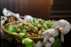 蛇麻草和糖果 免版税图库摄影