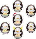 蛋企鹅的描述 库存照片