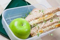 蛋健康午餐三明治 库存图片