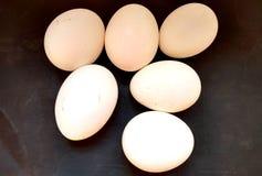 蛋充分的hd墙纸 免版税库存照片