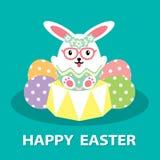蛋兔宝宝 免版税库存照片