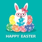 蛋兔宝宝 库存照片