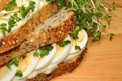 蛋和水芹三明治 免版税库存照片