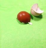 蛋壳 图库摄影