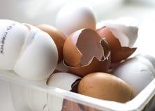 蛋壳 免版税库存图片