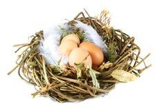 蛋嵌套 图库摄影