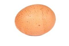 蛋接近  免版税图库摄影