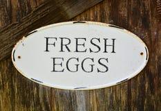 蛋标志 免版税库存图片