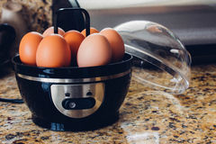 蛋烹饪器材 库存照片