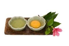 蛋白和卵黄质 免版税库存照片