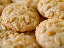 蛋白杏仁饼干瑞士五针松 图库摄影