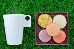 蛋白杏仁饼干甜点集。 库存图片