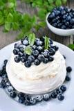 蛋白甜饼蛋糕用蓝莓 免版税库存照片