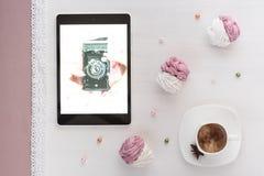 蛋白软糖手工制造白色和桃红色 免版税库存图片