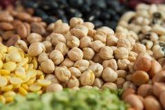 蛋白质食物豆类种子 免版税库存照片