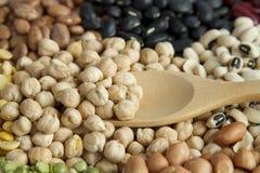 蛋白质食物豆类种子 免版税库存图片