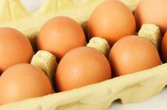 蛋盒 免版税图库摄影