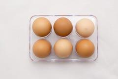 蛋盘子,六个鸡蛋,充分的数字 免版税库存图片