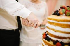 蛋糕切 库存图片