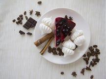 蛋糕和蛋白甜饼07 图库摄影