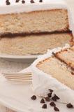 蛋糕巧克力特写镜头结霜的层白色 库存照片