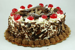 蛋糕巧克力 库存图片