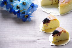 蛋糕干酪 库存图片