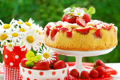 蛋糕庭院草莓表 库存照片