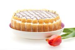 蛋糕意大利语 免版税图库摄影