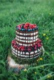 蛋糕或糖果店为一个生日或一个假日或者党 结块用莓果,草莓,莓,蓝莓 免版税图库摄影