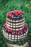 蛋糕或糖果店为一个生日或一个假日或者党 结块用莓果,草莓,莓,蓝莓 库存图片