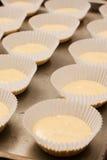 蛋糕托起被排行的行未成熟  免版税库存图片