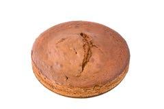 蛋糕榛子海绵 免版税图库摄影