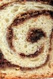 蛋糕海绵 免版税库存照片