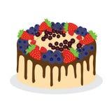 蛋糕用新鲜的不同的莓果 皇族释放例证