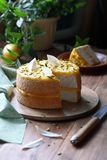 蛋糕用柠檬酱 免版税库存照片