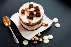 蛋糕用白色和黑暗的巧克力 免版税库存照片