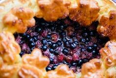 蛋糕用蓝莓 免版税图库摄影