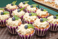 蛋糕用蓝莓 免版税库存照片