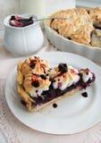 蛋糕用黑莓 库存图片