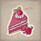 蛋糕的例证用草莓 免版税图库摄影