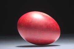 蛋红色 库存图片